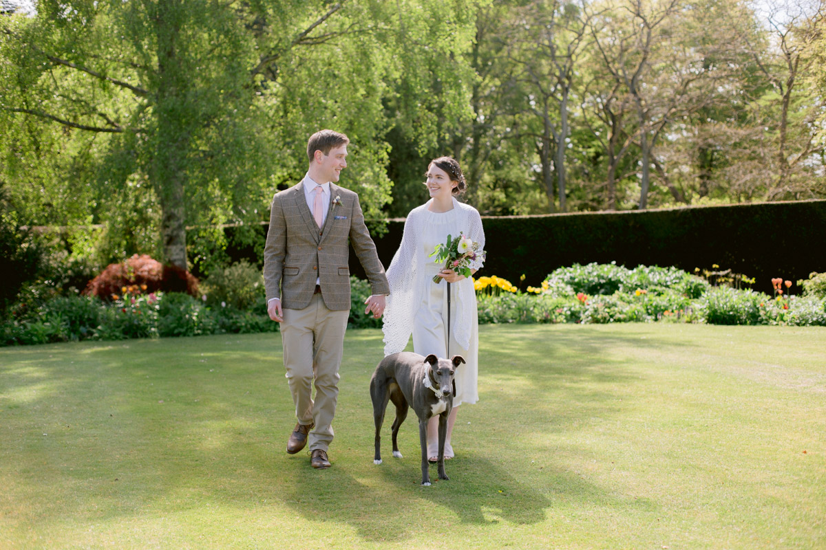 Greyhound wedding photography