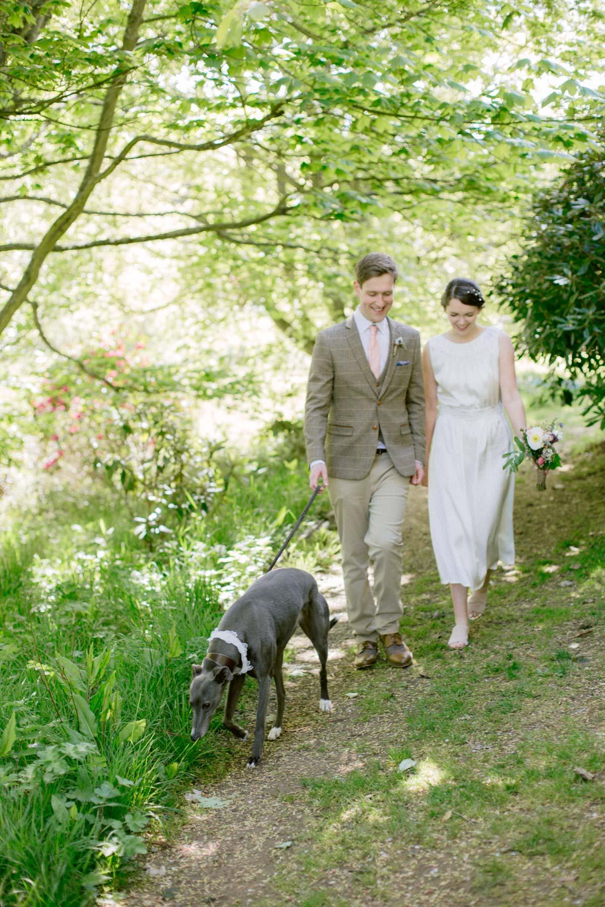 Rescue Grey Hound Wedding Photography