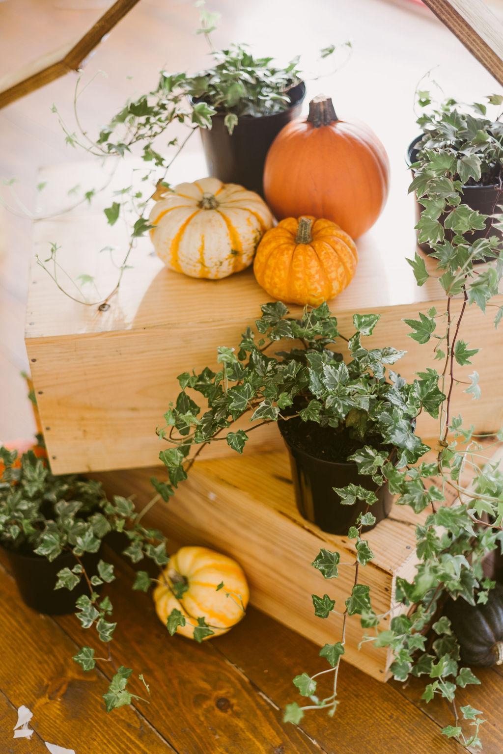 Elsick House Wedding | Pumpkin and ivy wedding decor