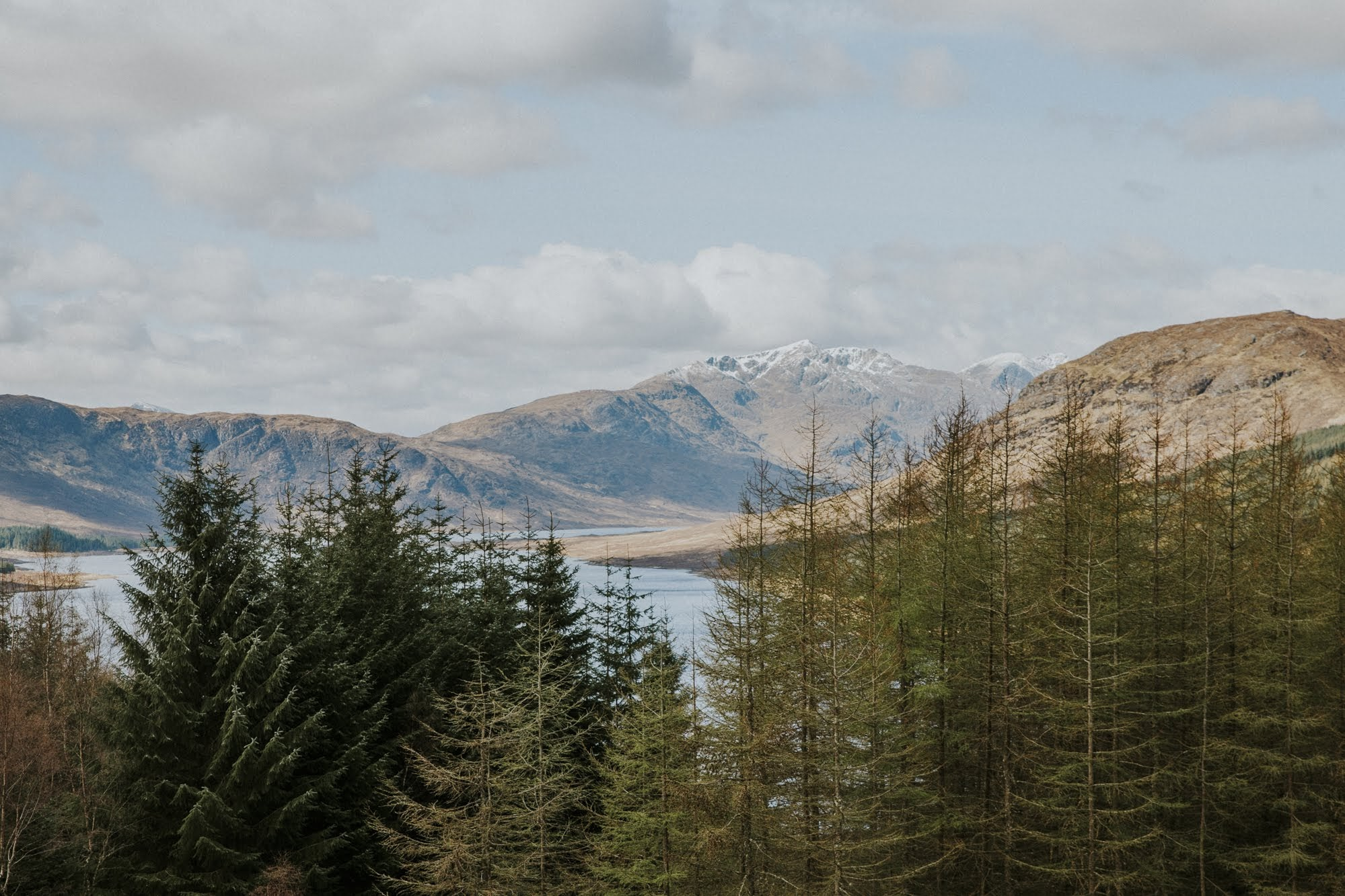 Cairngorms - Ceranna Photography - forest